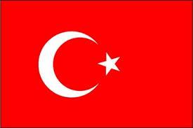 turkbayragi