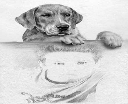 Köpekli Karakalem Çizimi