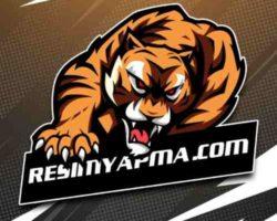 Mascot Logo Yapımı – Oyun Mascotu Oluşturun