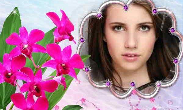 Pembe Çiçekli Resim